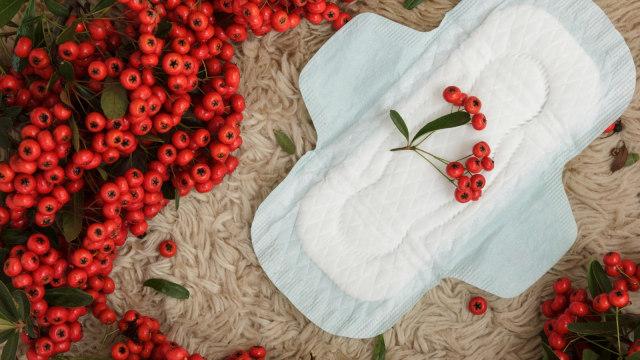 Begini Cara Kenali Gangguan Menstruasi (22953)