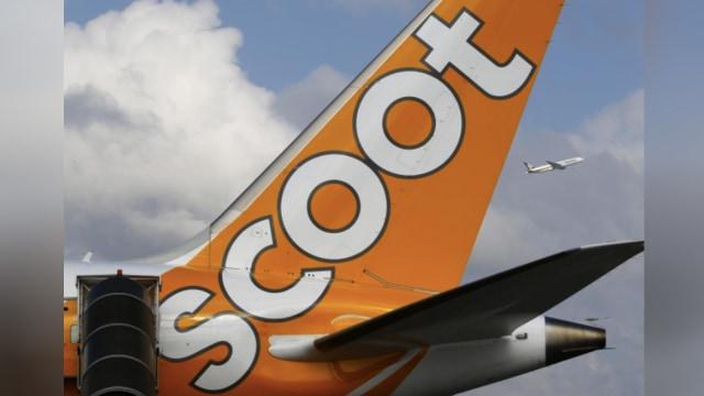 Flys Scoot Tiger Air