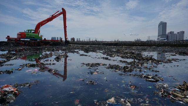 Teluk Jakarta Terkontaminasi Obat Paracetamol, Kok Bisa?