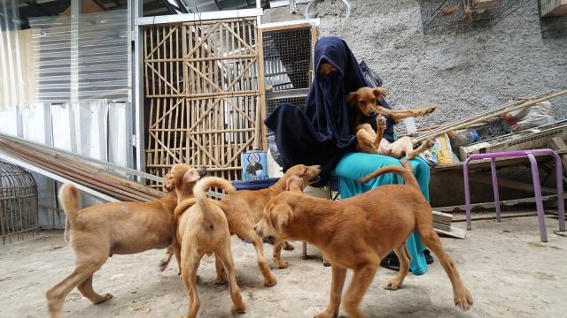 Hesti Perempuan Bercadar Pecinta Anjing: Mereka di Sini karena Allah (44361)