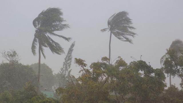 BNPB Minta 30 Gubernur Waspadai Cuaca Ekstrem Akibat Bibit Siklon Tropis 94W (162952)