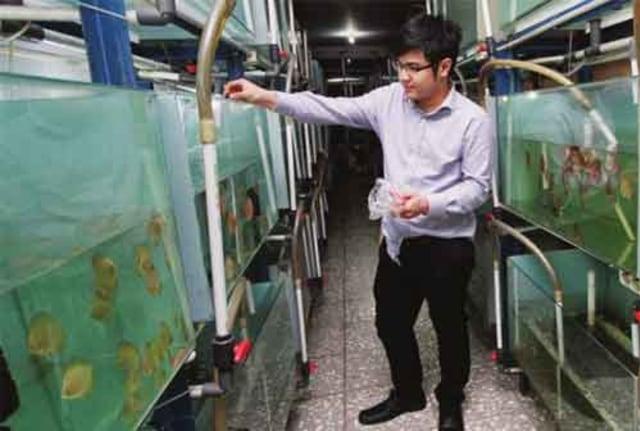 Kisah Inspiratif Nicholas Kurniawan, Eksportir Ikan Hias Sukses Termuda di Indonesia (37339)
