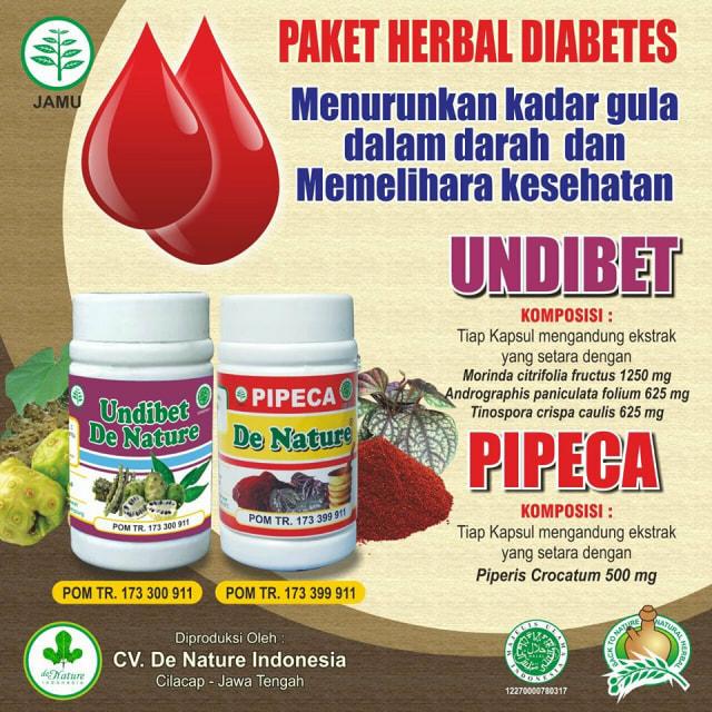 diabetes de pengobatan dengan cara tradisional