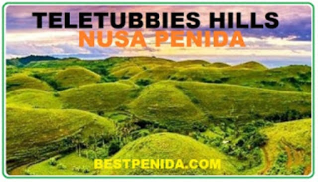 PAKET TOUR NUSA PENIDA  (210087)
