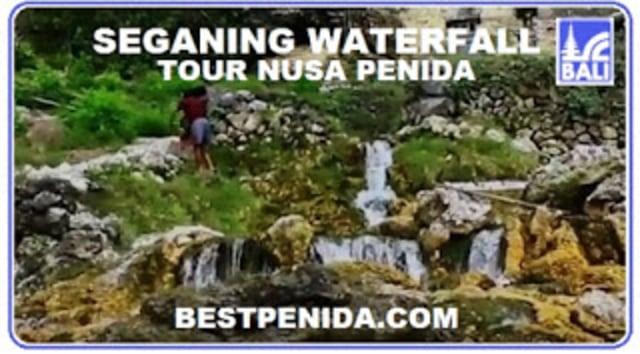 PAKET TOUR NUSA PENIDA  (210092)