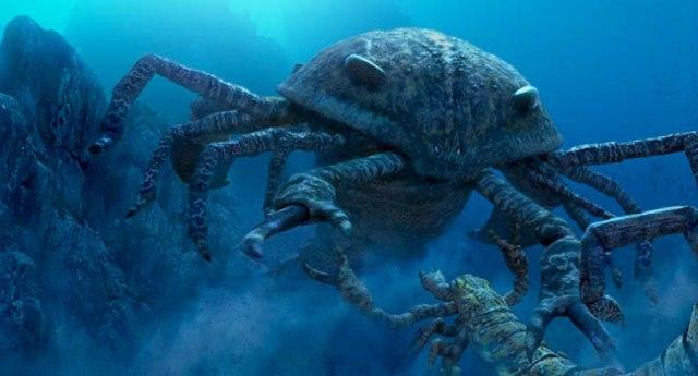 42 Gambar Hewan Laut Dan Darat Gratis