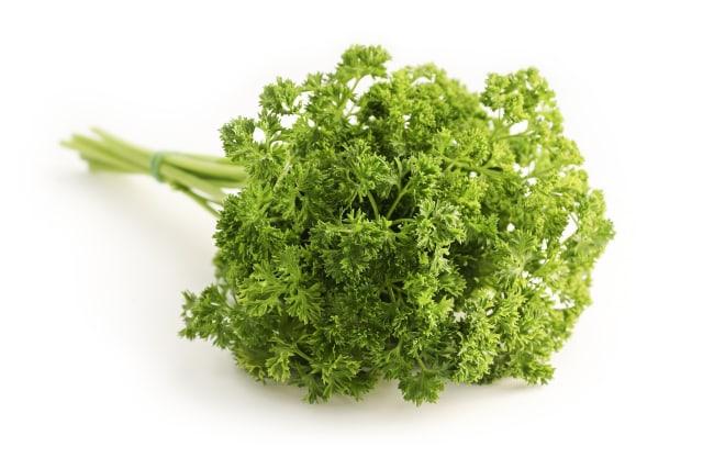 Ilustrasi daun parsley