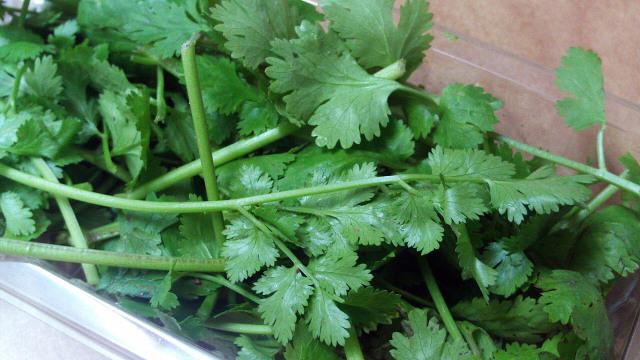Bisa Jadi Hobi Baru, 7 Sayuran dan Rempah yang Dapat Ditanam Ulang di Rumah (311395)