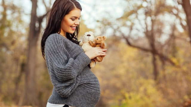 Peran Hormon Estrogen dan Progesteron Pada Ibu Hamil (830267)