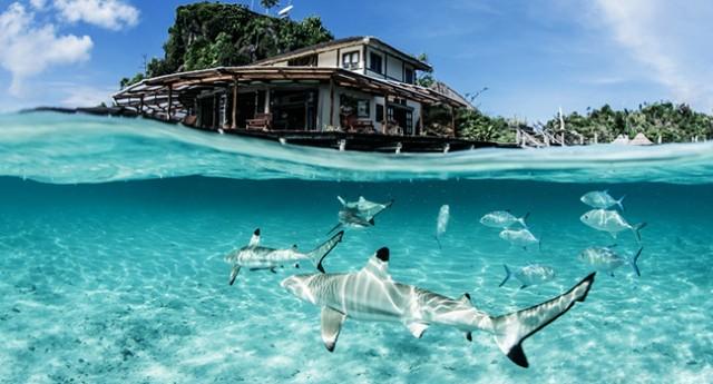 5 Penginapan Terapung Di Indonesia Pemandangan Laut Yang Super Indah Kumparan Com