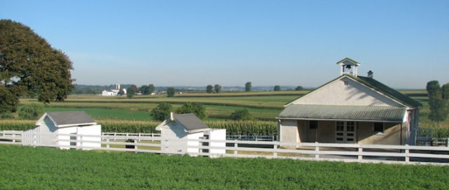 Kesederhanaan Komunitas Amish di Tengah Modernnya Amerika (59539)