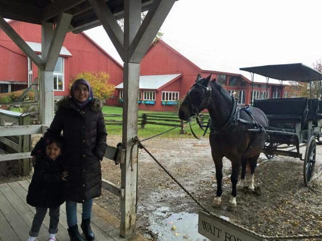 Kesederhanaan Komunitas Amish di Tengah Modernnya Amerika (59534)