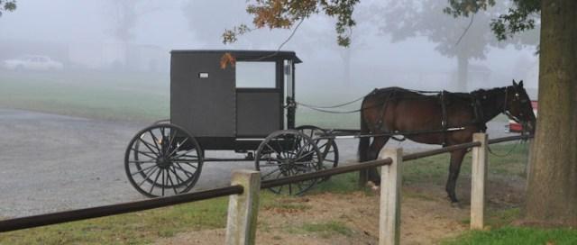 Kesederhanaan Komunitas Amish di Tengah Modernnya Amerika (59538)