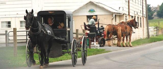 Kesederhanaan Komunitas Amish di Tengah Modernnya Amerika (59533)