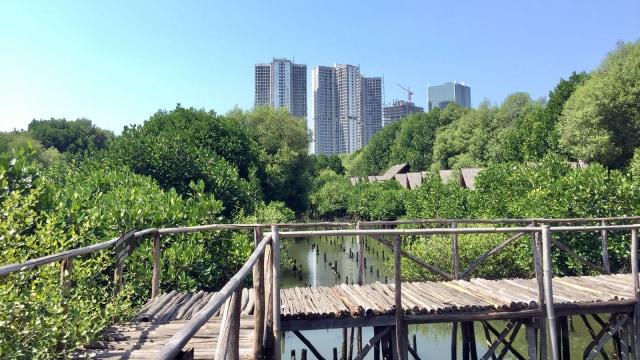 7 Fasilitas yang Bisa Dinikmati di Taman Wisata Alam Angke Kapuk (61203)