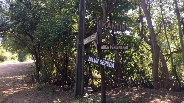 7 Fasilitas yang Bisa Dinikmati di Taman Wisata Alam Angke Kapuk (61210)