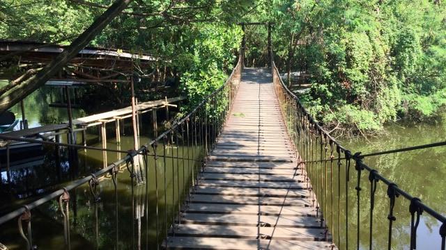 7 Fasilitas yang Bisa Dinikmati di Taman Wisata Alam Angke Kapuk (61206)