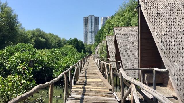 7 Fasilitas yang Bisa Dinikmati di Taman Wisata Alam Angke Kapuk (61204)