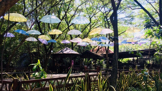 7 Fasilitas yang Bisa Dinikmati di Taman Wisata Alam Angke Kapuk (61205)