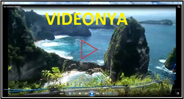 NUSA PENIDA TOUR PACKAGE (96751)
