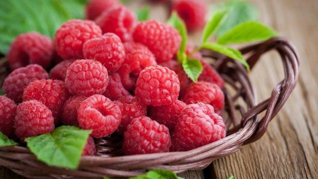 Ilustrasi raspberry