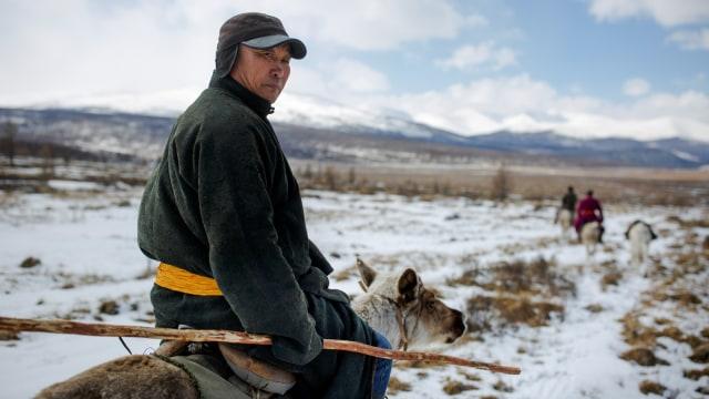 Mengenal Dukha, Suku Penggembala Rusa Kutub Terakhir di Bumi (367313)