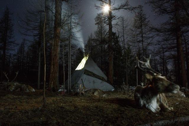 Mengenal Dukha, Suku Penggembala Rusa Kutub Terakhir di Bumi (367315)