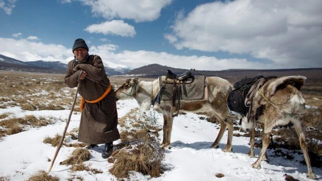 Mengenal Dukha, Suku Penggembala Rusa Kutub Terakhir di Bumi (367312)