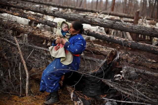 Mengenal Dukha, Suku Penggembala Rusa Kutub Terakhir di Bumi (367314)