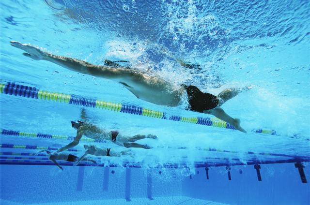 com-Olahraga Akuatik