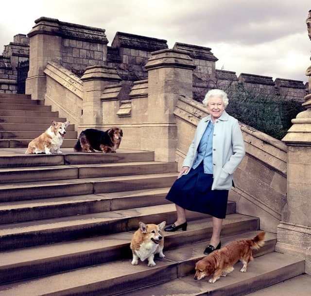 Ratu Elizabeth II dan corgi miliknya
