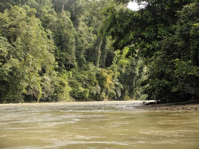 Brunei Darussalam: 'Kingdom of Unexpected Treasure' (97140)