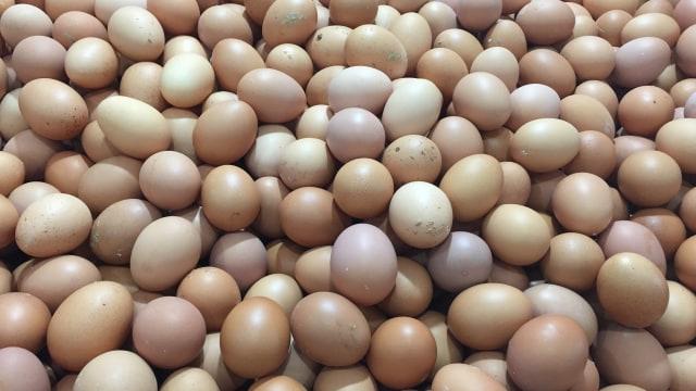 7 Makanan yang Tidak Boleh Dibekukan agar Tetap Lezat dan Keluarga Sehat (34998)