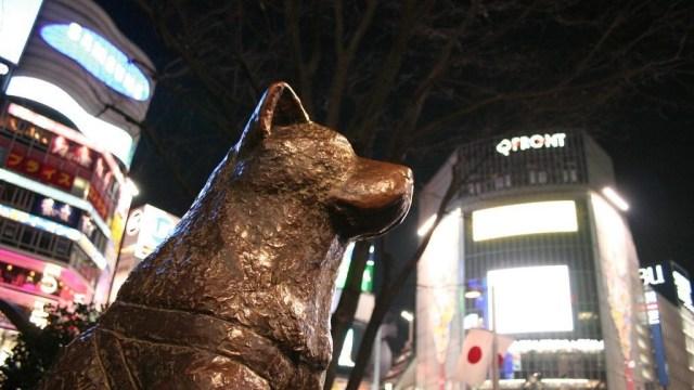 Kisah Sedih di Balik Megahnya Patung Hachiko (2)