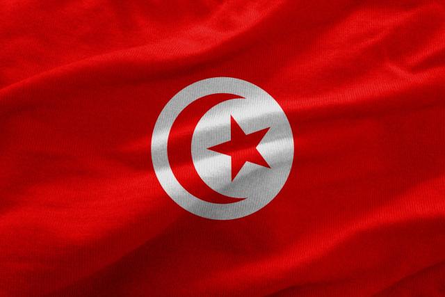 Tunisia, Pionir Feminisme di Dunia Arab (317003)