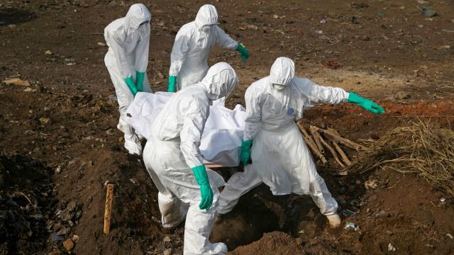 Virus Ebola Bisa Sembunyi di Tubuh Bertahun-tahun, Berisiko Picu Wabah Baru (193084)