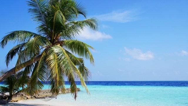 9 Homestay di Kepulauan Seribu Jadi Tempat Isolasi Pasien OTG COVID-19 (54796)