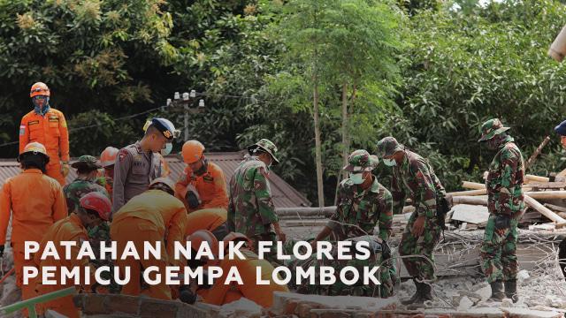 Mengenal Patahan Naik Flores si Pemicu Rangkaian Gempa Lombok (88863)