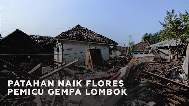 Mengenal Patahan Naik Flores si Pemicu Rangkaian Gempa Lombok (88859)
