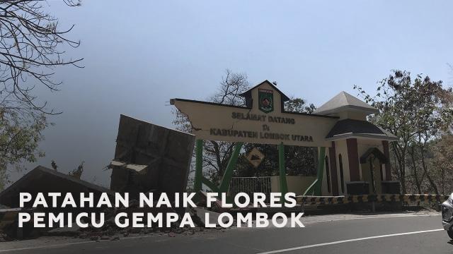 Mengenal Patahan Naik Flores si Pemicu Rangkaian Gempa Lombok (88860)
