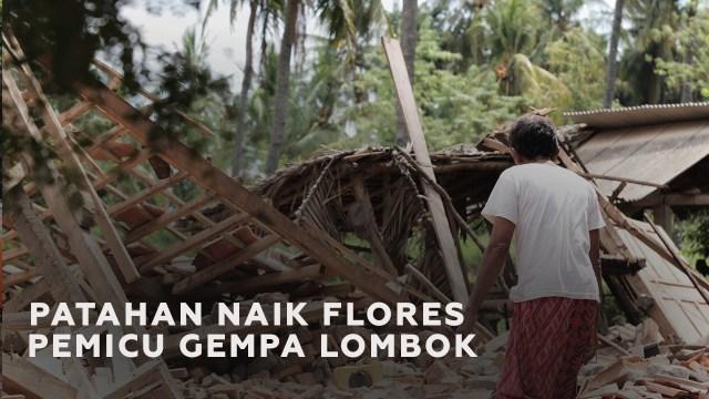 Mengenal Patahan Naik Flores si Pemicu Rangkaian Gempa Lombok (88861)