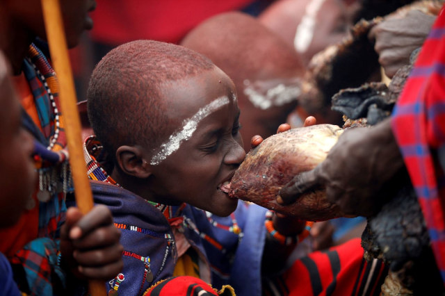 Tradisi Minum Darah, Cara Suku Maasai Dapat Kekuatan Taklukkan Raja Hutan (215945)