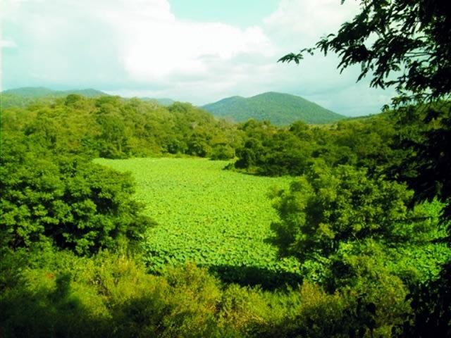 Keindahan Danau Rana Tonjong di Flores