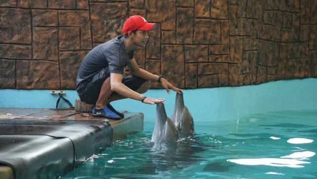 Para peserta komit up kumparan berkunjung ke Dolphin Bay di Ancol.