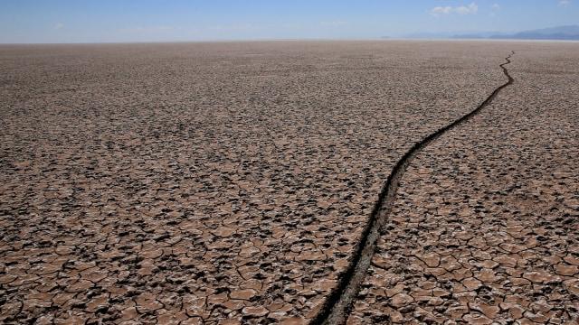 14.000 Ilmuwan: Krisis Iklim di Depan Mata, Jangan Abai Jika Tak Mau Celaka (86827)