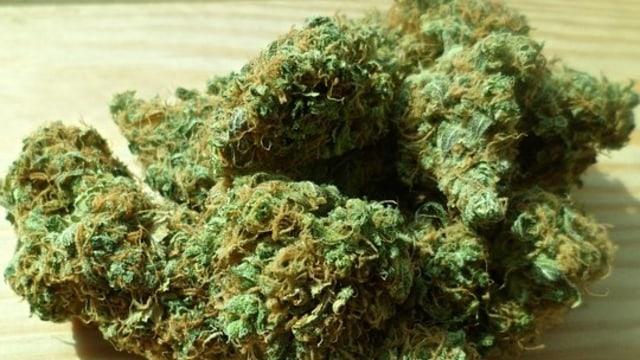 Riset Ungkap Efek Legalisasi Ganja pada Remaja di AS (224956)