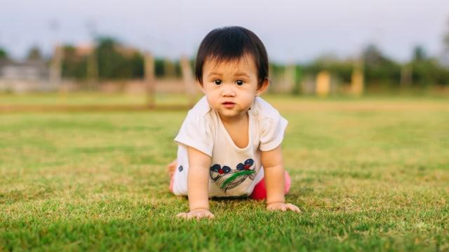 Bayi merangkak di rumput.