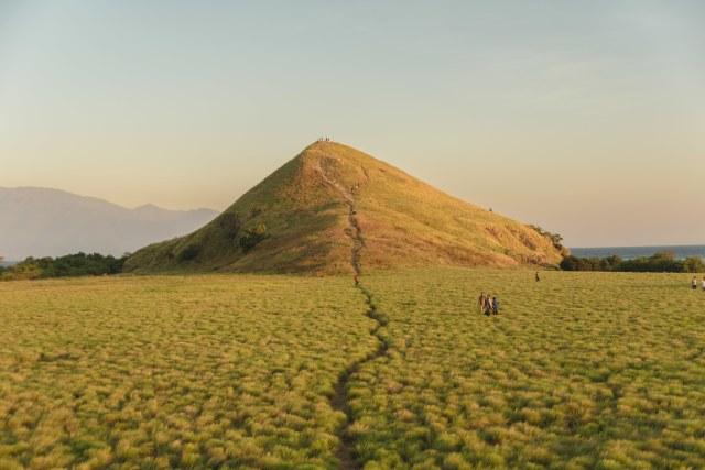 Hamparan Padang Rumput Hijau di Pulau Kenawa