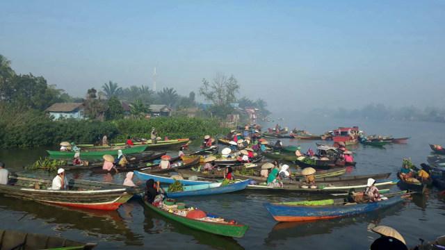 KLHK: Luas Hutan Alam di Kalimantan Selatan Turun 463.481 Hektare Sejak 1990 (4)