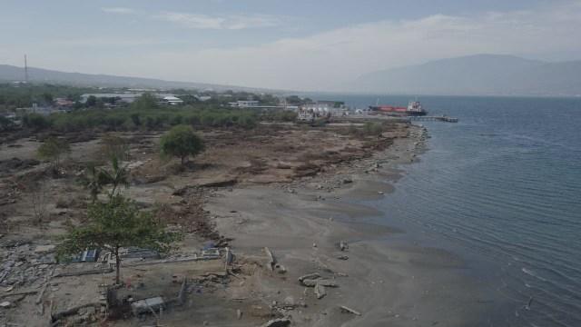 tsunami palu, gempa bumi, bencana alam